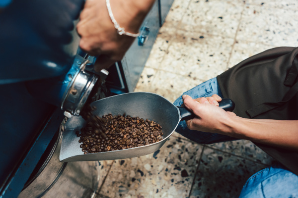 woman taking coffee beans out of