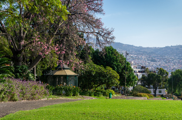 view of funchal city from the