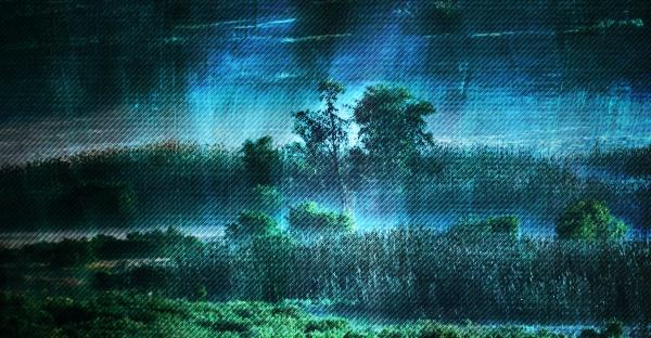 landscape with morning fog over wetland