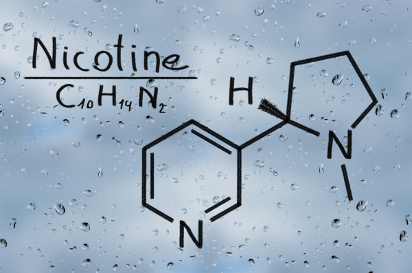 structural model of nicotine
