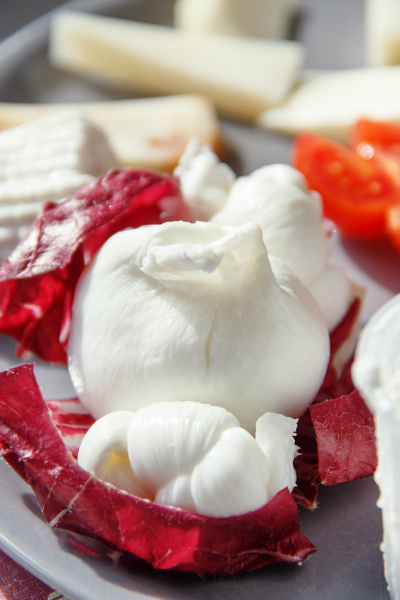 south italian fresh made cheese plate