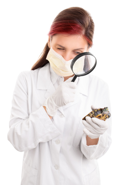 young, veterinarian, examining, a, turtle, with - 28216431