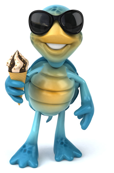 fun, turtle - 28217694