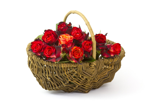 red, roses, in, a, basket, on - 28217739