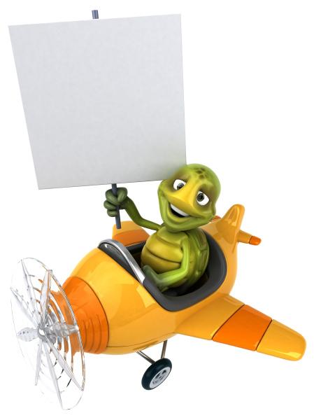 fun, turtle - 28218099