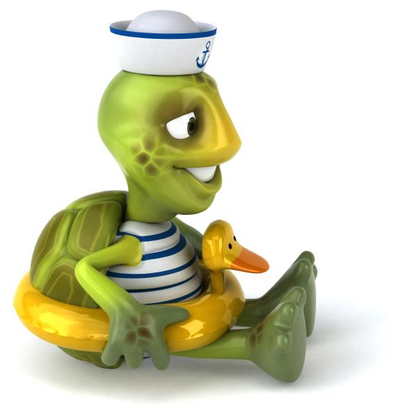 fun, turtle - 28218128