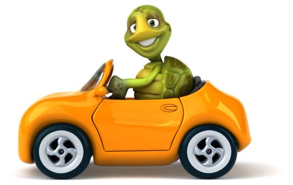 fun, turtle - 28218329