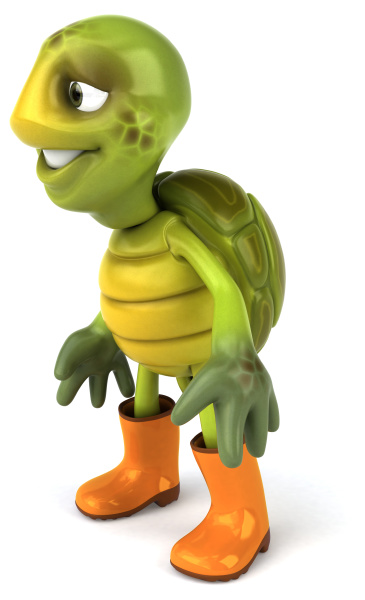fun, turtle - 28218440