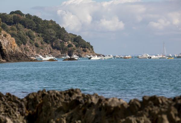 , fishing, boats, and, yachts, moored - 28237943