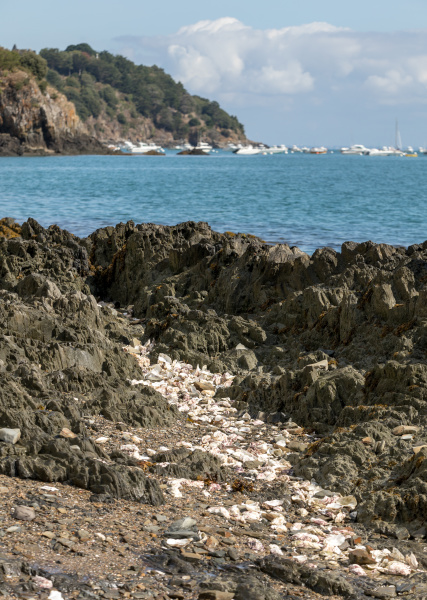 coast, with, oyster, shells, in, cancale - 28237942