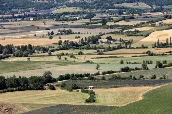 patchwork, of, farmer, s, fields, in - 28238453