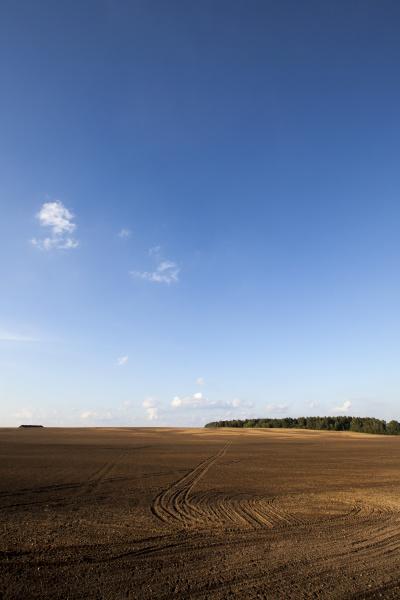 landscape, on, the, field, , ruts - 28239504