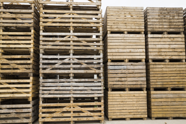 old, wooden, boxes - 28239895