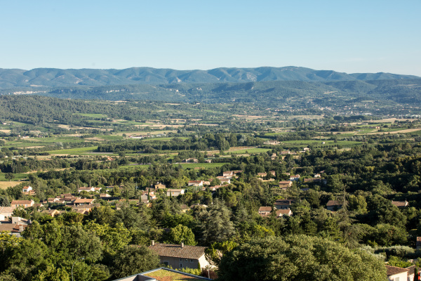 panoramic, view, of, cultivated, fields, , vineyards - 28239264