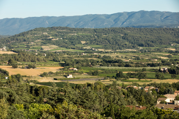 panoramic, view, of, cultivated, fields, - 28239263