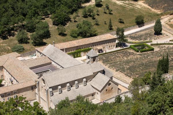 senanque, abbey, or, abbaye, notre, dame - 28239148