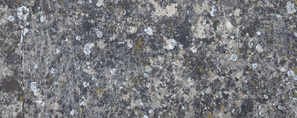 wide, grey, concrete, texture, background, with - 28240313