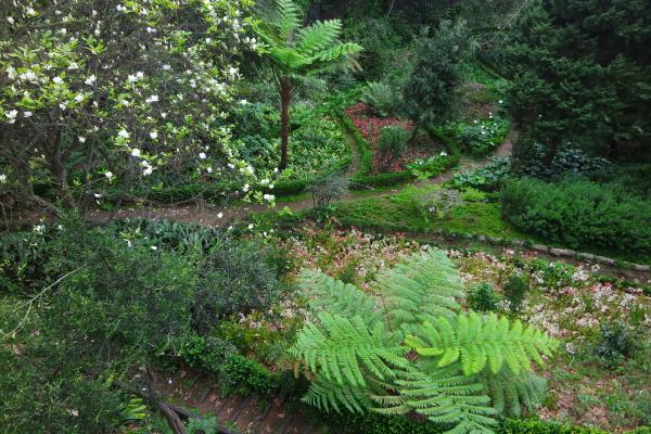 city garden monte madeira