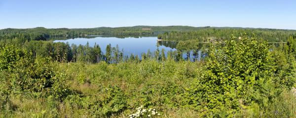 panorama of the lake gissen