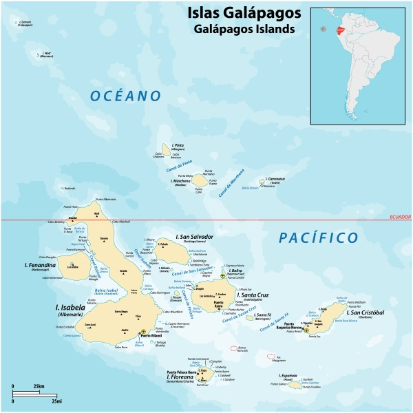detailed vector map of the galapagos