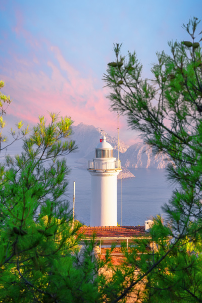 cape gelidonia lighthouse surrounded by pine