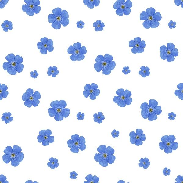 seamless vector flower pattern white background