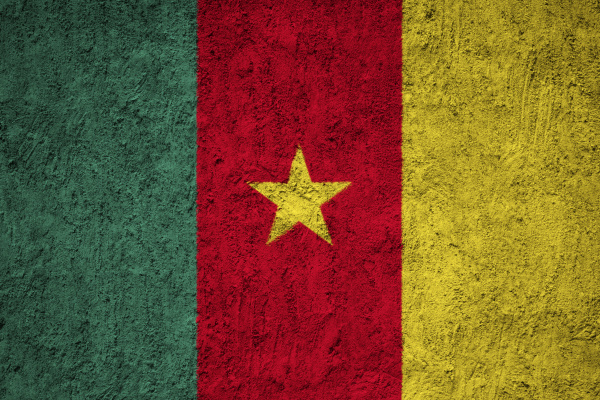 cameroon flag painted on the cracked