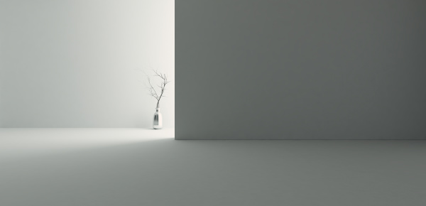 backlight empty room with wall and