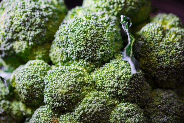 fresh green broccoli background close up