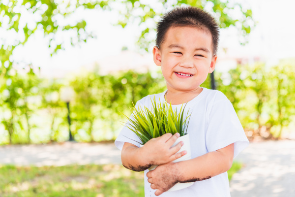 little child boy holding young tree