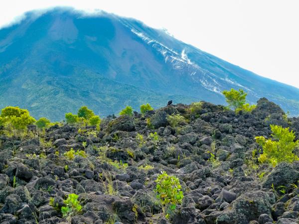 arenal volcano national park alajuela san