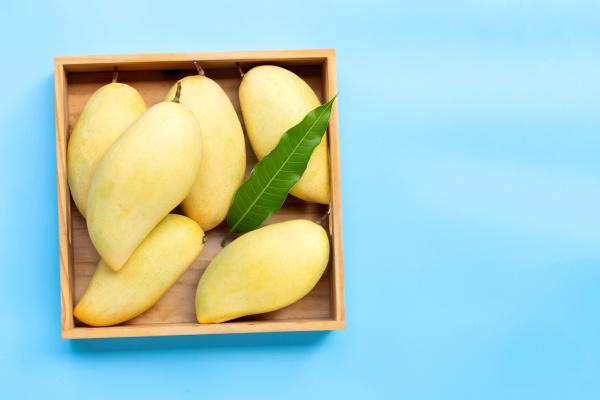 tropical fruit mango in wooden