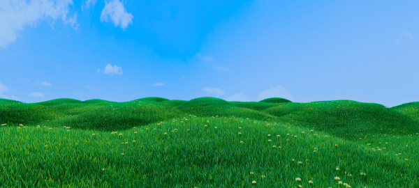 green grass and flowers on hills