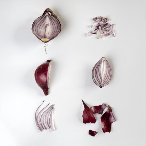 onions evolution