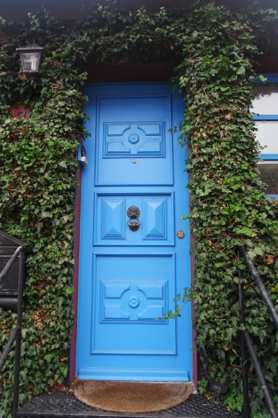 blue door in ivy