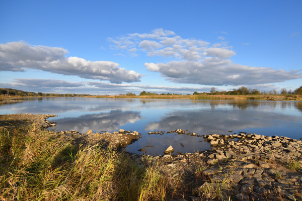 the river oder near lebus in