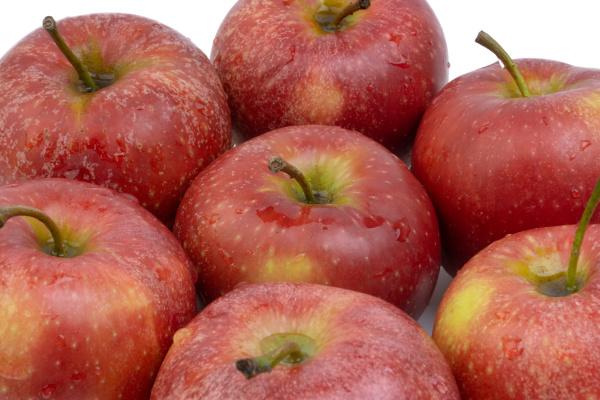 apple fruit on white background selective
