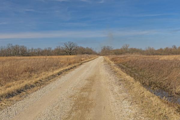 rural road through a prairie wetland