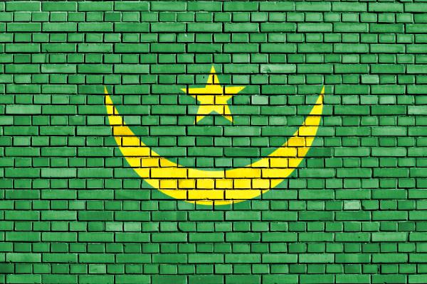 flag of mauritania painted on brick