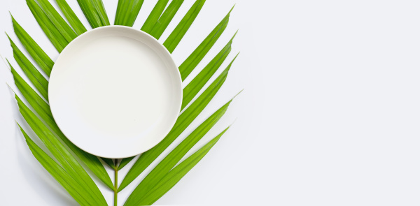 white ceramic plate on tropical palm