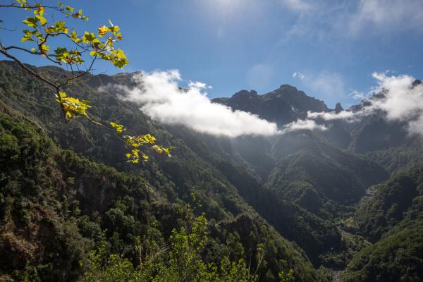 pico do arieiro seen from balcoes