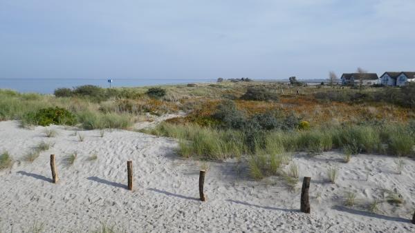 coastal landscape in heiligenhafen