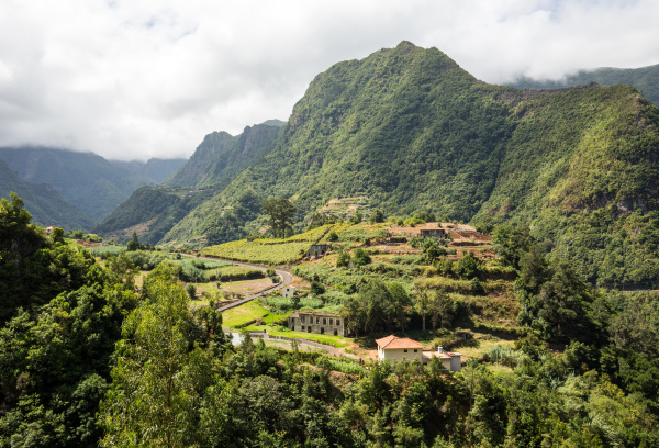 village and terrace cultivation in