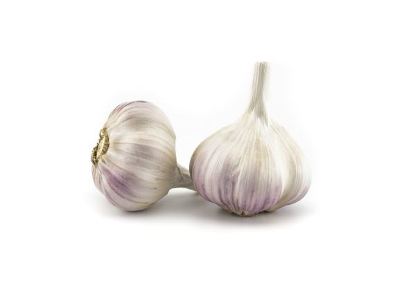 garlic bulbs in close up on