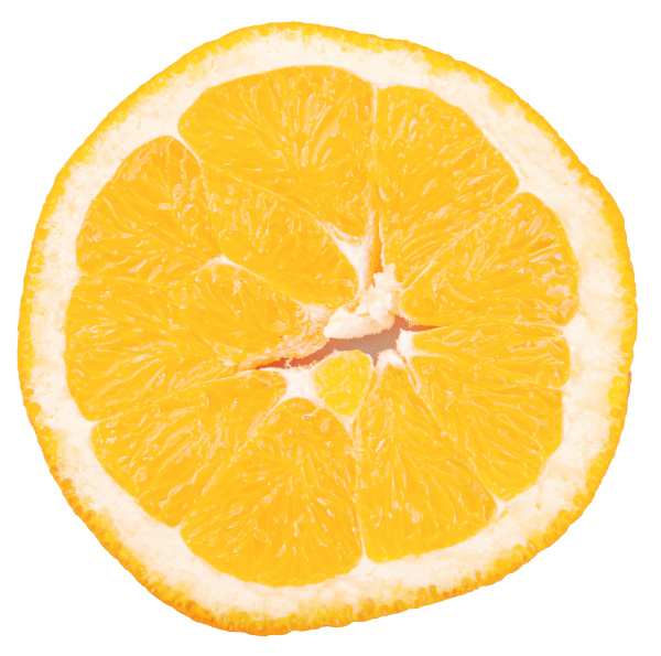 slice of orange fruit isolated on