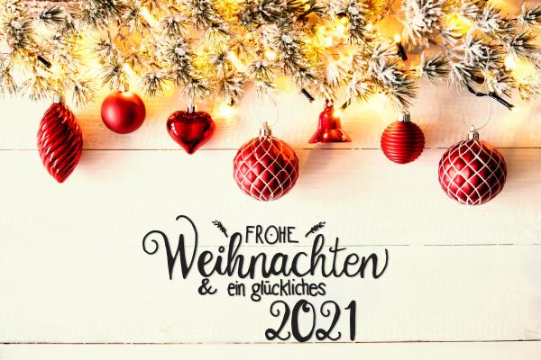 red christmas decoration fir branch glueckliches