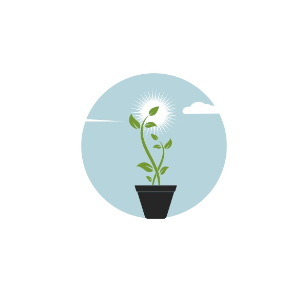 plant logo icon vector illustration design