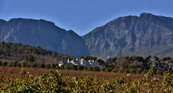 landscape with vineyards in autumn and