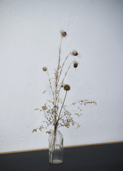 spiky plant stems in glass bottle