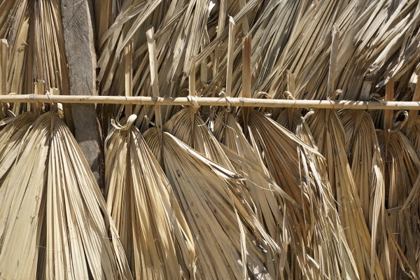 close up palm leaf roofing